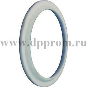 Кольцо уплотнения вала ИПБ-2,3.02.00.003