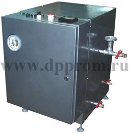 Парогенератор (регулируемый) ДПП-129-100Р - фото 27715
