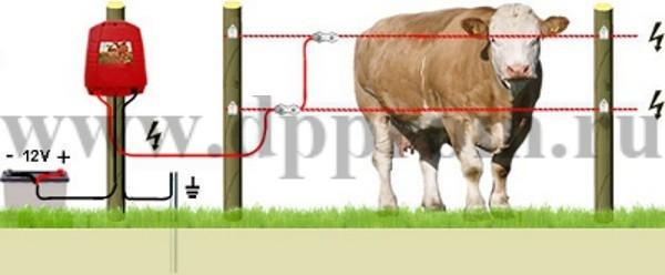 Комплект для содержания КРС ДПП-12-1000 - фото 29396