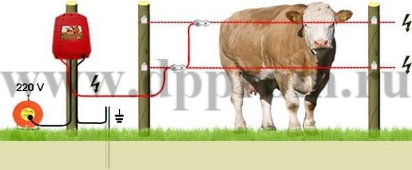 Комплект для содержания КРС ДПП-220-1000 - фото 29428