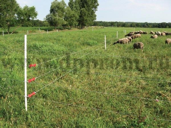 Комплект для содержания овец ДППО-12-1000 - фото 29458