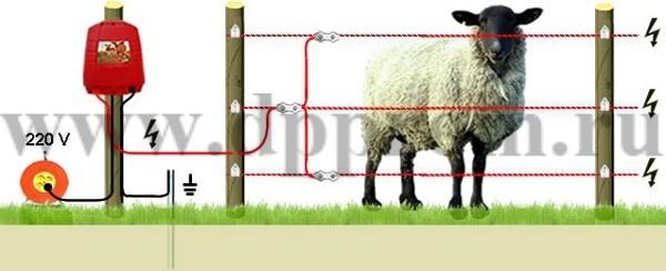 Комплект для содержания овец ДППО-220-1000 - фото 29471