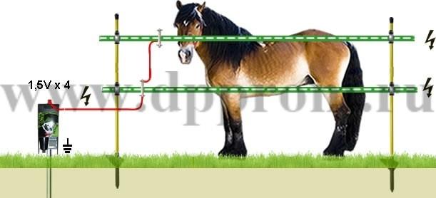 Комплект для содержания лошадей ДППЛ-6-100М - фото 29533