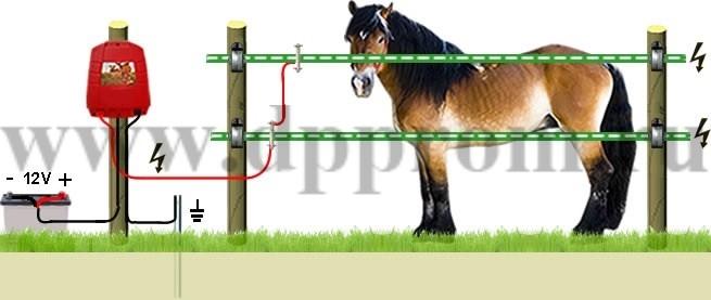 Комплект для содержания лошадей ДППЛ-12-400М - фото 29573