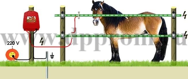 Комплект для содержания лошадей ДППЛ-220-100 - фото 29588