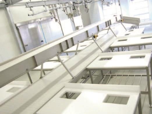 Комплексные установки и системы для убоя КРС - фото 54293