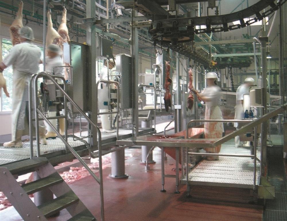 Комплексные установки и системы для убоя овец - фото 54302