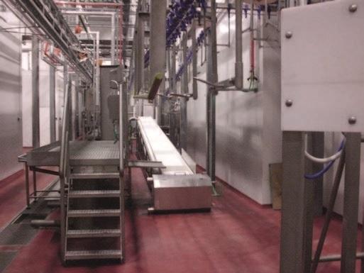 Комплексные установки и системы для убоя овец - фото 54308